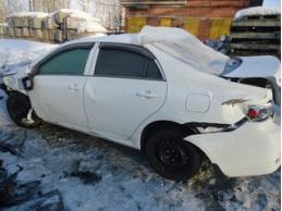 Toyota Corolla 20.02.2013